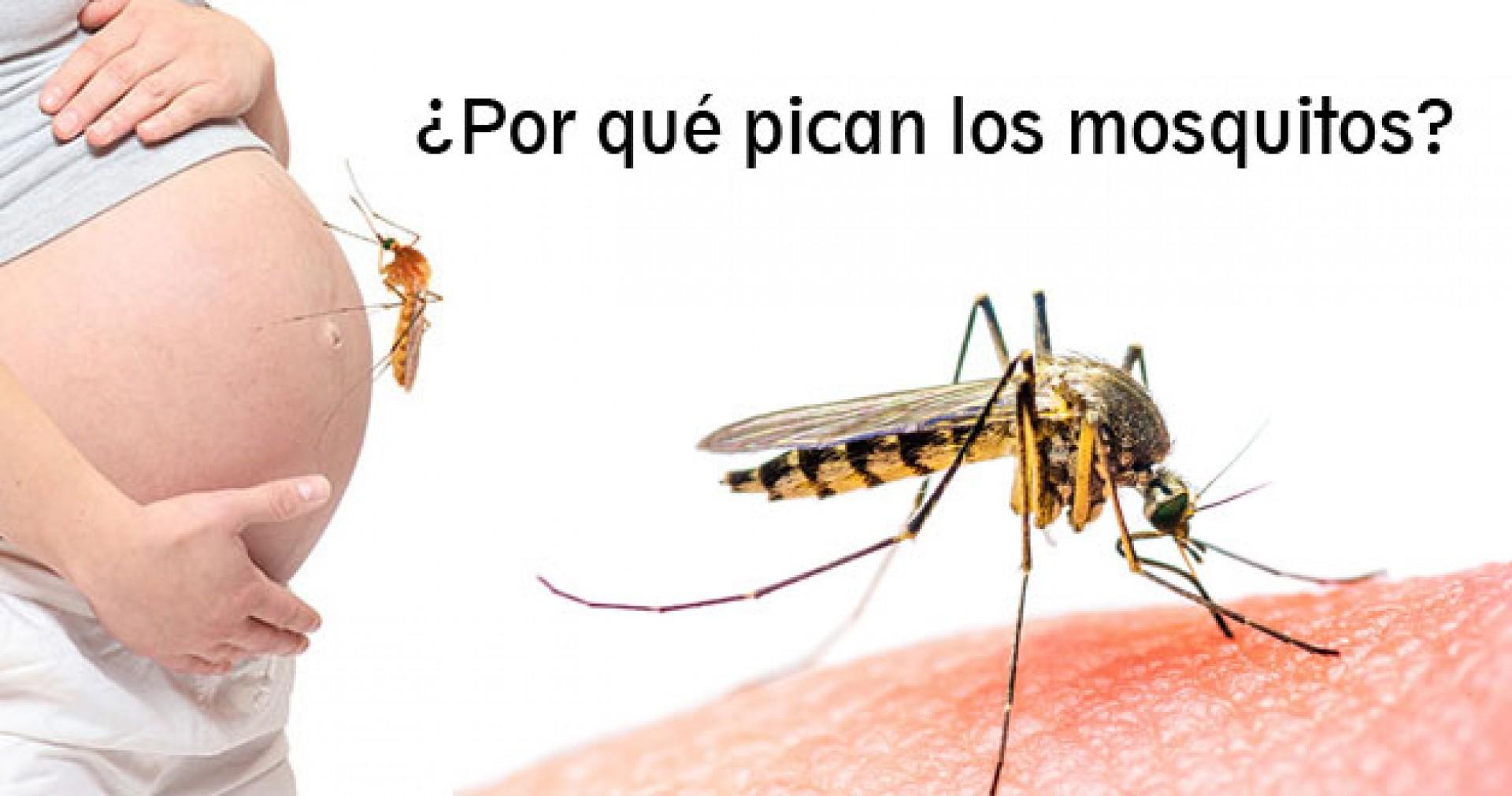 Los mosquitos pican